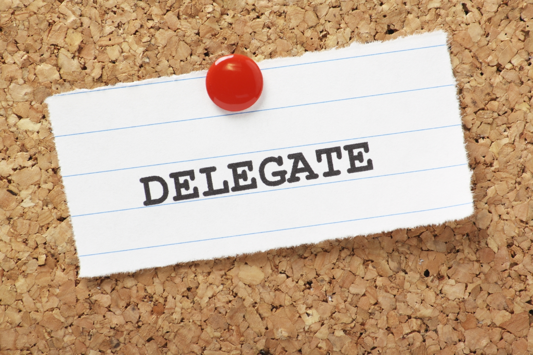 Delegate Delegation Of Performance Of Duties